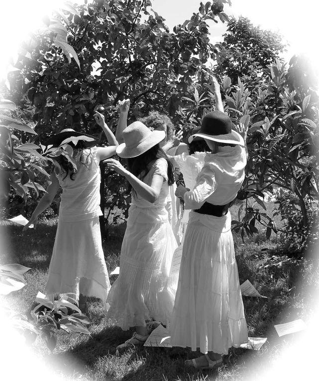 un dimanche d'été - diaporama - extraits - Parc de sceaux juillet 2013