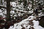 Neige fondue à la Haute Loge