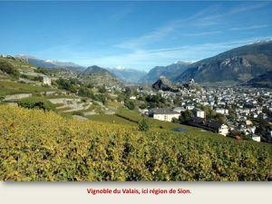 Voltaire, Rousseau, Mozart, 3ème partie : le vin