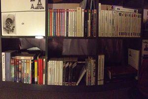 Ma petite bibliothèque