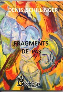 """Denis Schilliger présente """"Fragments de pas"""""""