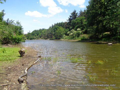 """Le """"Lac des Meinettes"""" interdit à la baignade ....."""