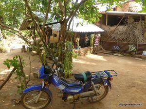 La vie dans un village du Sri-Lanka