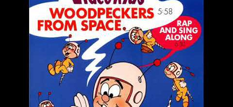 VIDEO KIDS - WOODPECKERS FROM SPACE