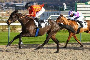 Quinté dimanche à Longchamp : Velma Valento a des ambitions