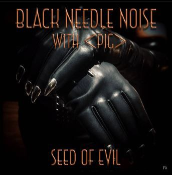 💿  Black Needle Noise with PIG - Seed Of Evil