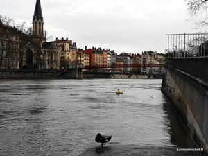 Bord de Saône rive gauche, passerelle Saint Georges (aujourd'hui nommée abbé P Couturier)