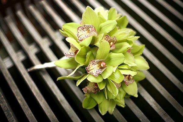 Idées pour déco de mariage vert anis