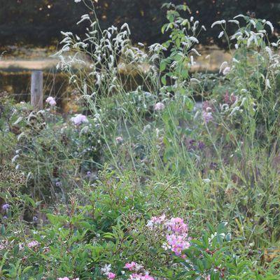Comment assurer un jardin paisible en 2021 ?