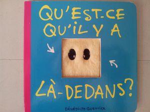 Bénédicte Guettier - Auteur Jeunesse