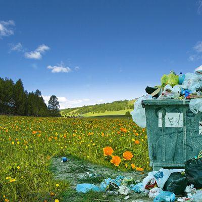 Pourquoi lutter contre les plastiques ?