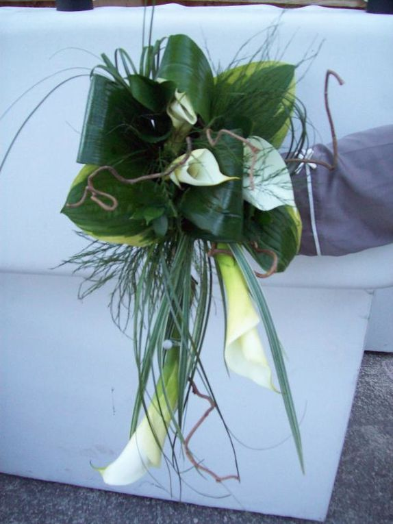 Album - Bouquets tombants