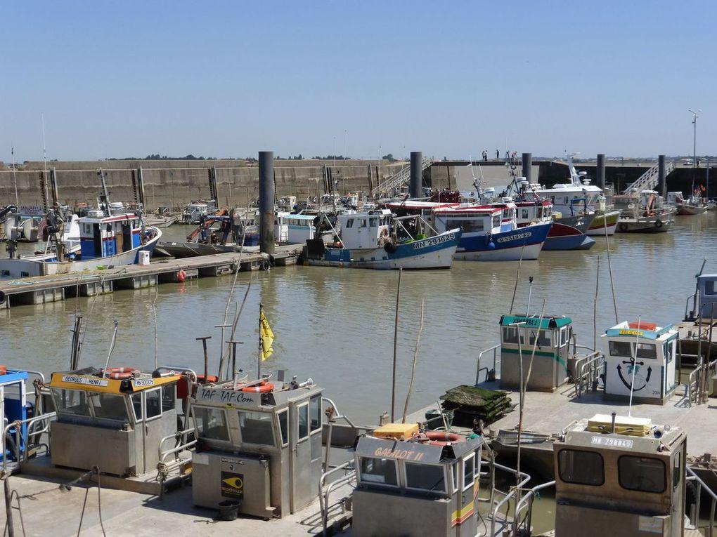 Le Port (et le pont d'Oléron)
