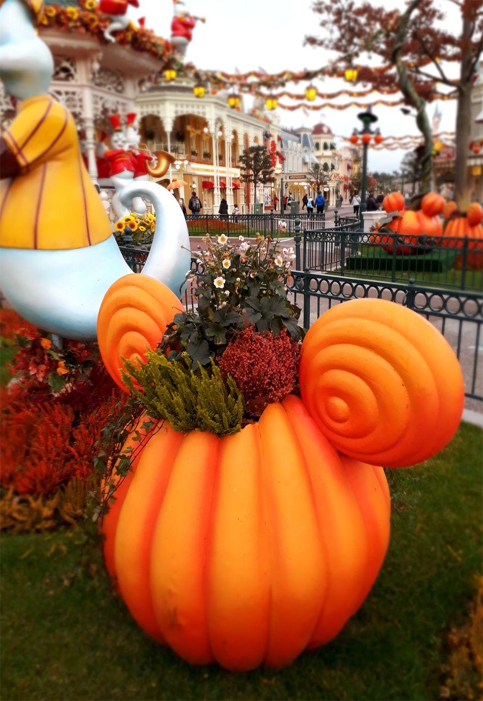 Escapade d'une journée chez Disney dans l'ambiance d'Halloween