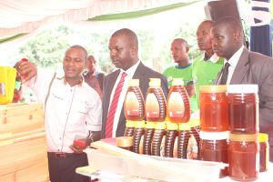 MP Gideon Ochanda being shown youth beekeeping projects sponsored by KCB Foundation