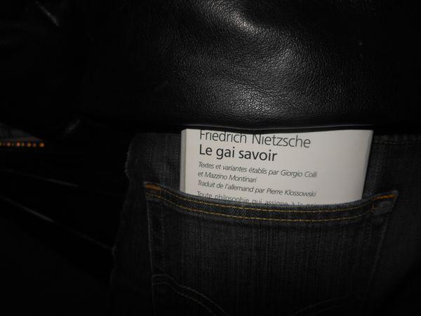 Paris. RER. Déc. 2012. Le Gai Savoir. Friedrich Nietzsche. © Jean-Louis Crimon. L'homme et ses labyrinthes. 10/18. Angèle Kremer-Marietti.