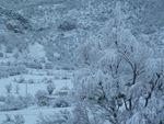 Les Omergues sous la neige...
