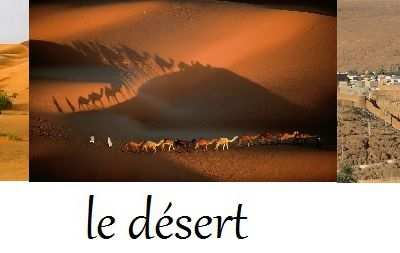 Akli prince du désert