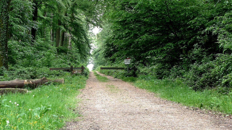 le carrefour du Rond de Châtillon