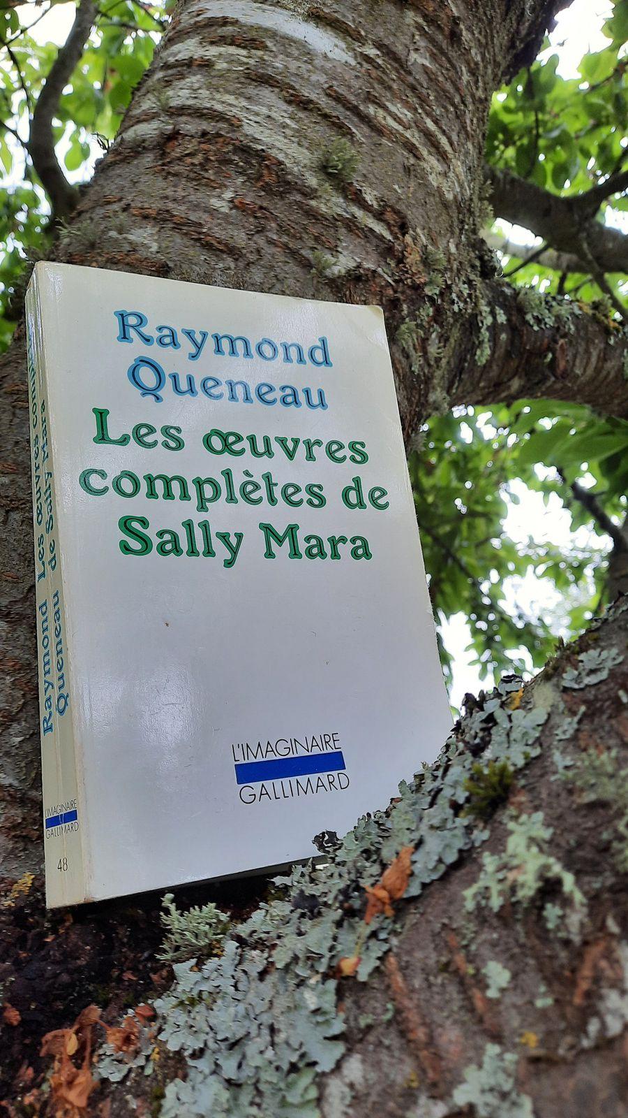 Les œuvres complètes de Sally Mara, réunies par Raymond Queneau le potache