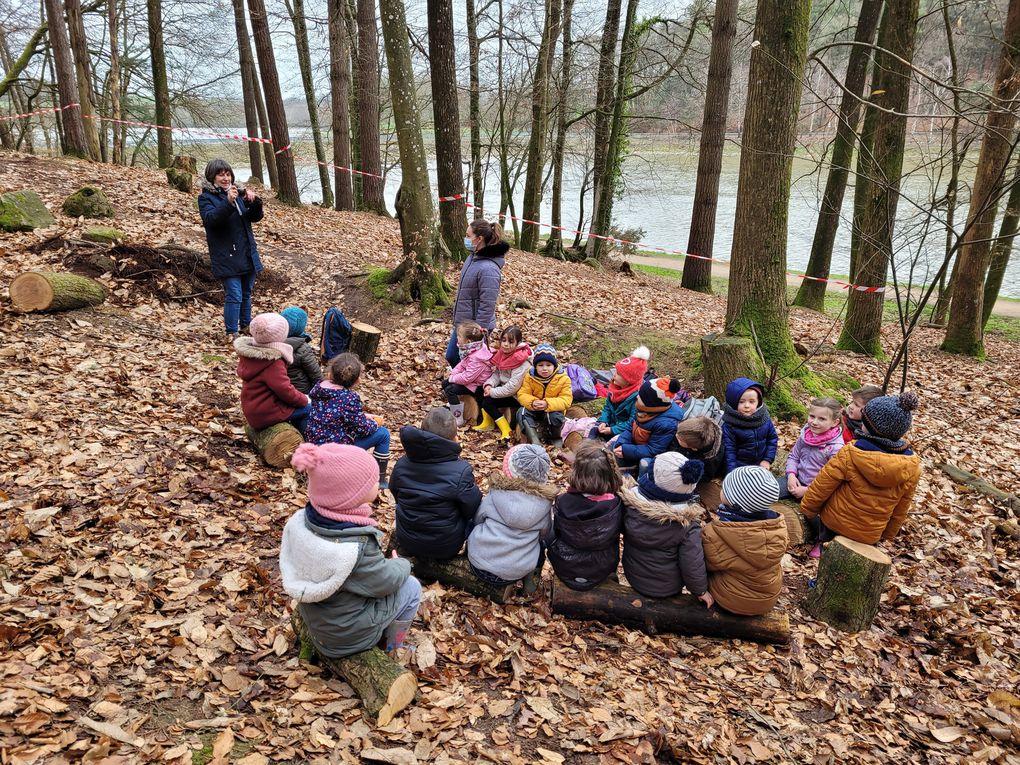 Sorties en forêt de la classe de Danielle et Thérèse