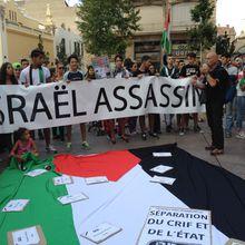 Manifestation de soutien au Peuple Palestinien, Perpignan 23-07-14