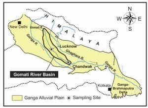 Figure 7. Carte de localisation du bassin de la rivière Gomati (courtoisie: Jigyasu et al.1).  Figure 8. Répartition saisonnière de la concentration d'aluminium dissout dans les eaux de pluie et rejet dans la rivière Gomati à Chandwak (courtoisie: Jigyasu et al.1).