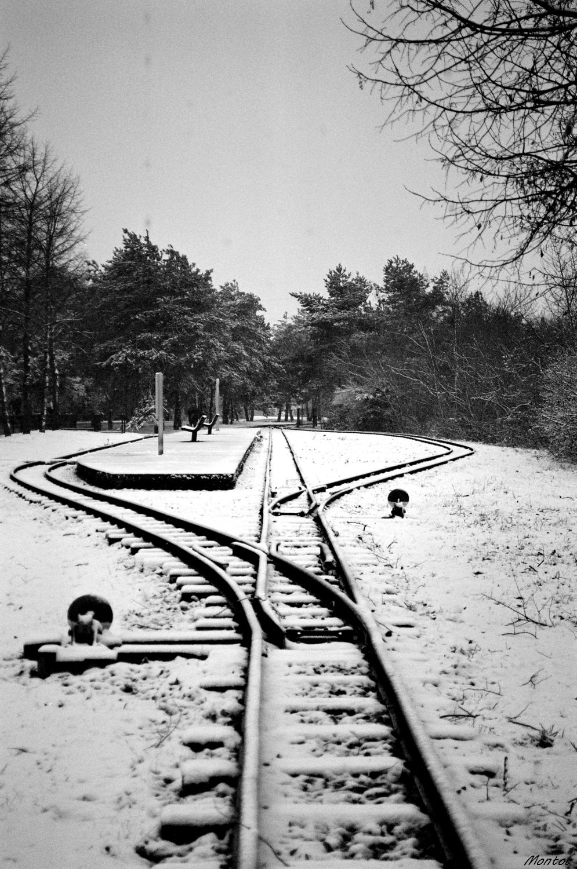 Episode neigeux