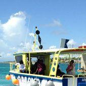 Les aqualodges utilisées pour faire renaître le corail à Saint François - Guadeloupe la 1ère