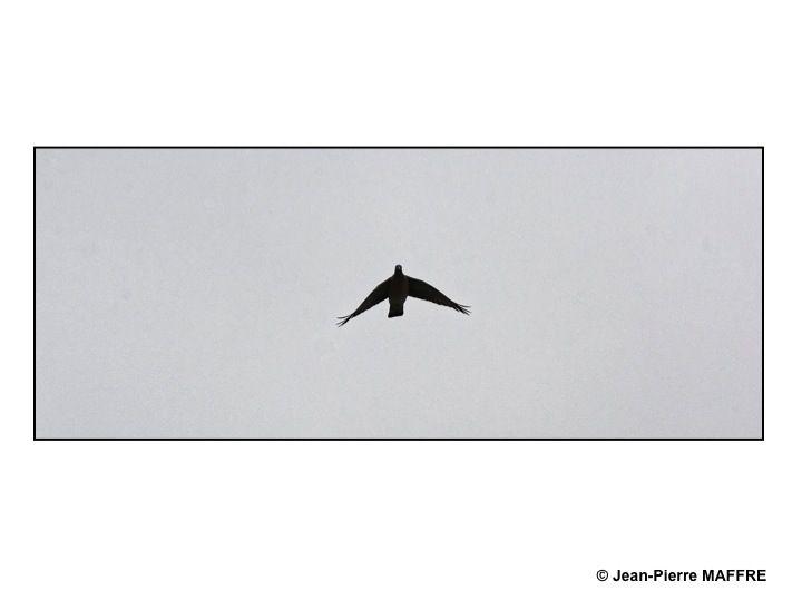 Un lieu de prise de vues inattendu loin des Champs Elysées pour capturer le vol des avions qui ont survolé paris les 14 juillet 2017, 2019 et 2020.