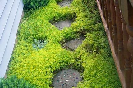Paths and walkways a