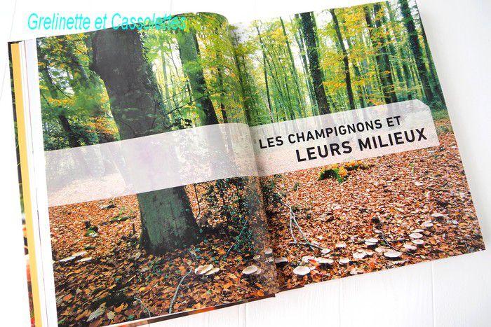 Le Larousse des Champignons, 400 espèces de France et d'Europe