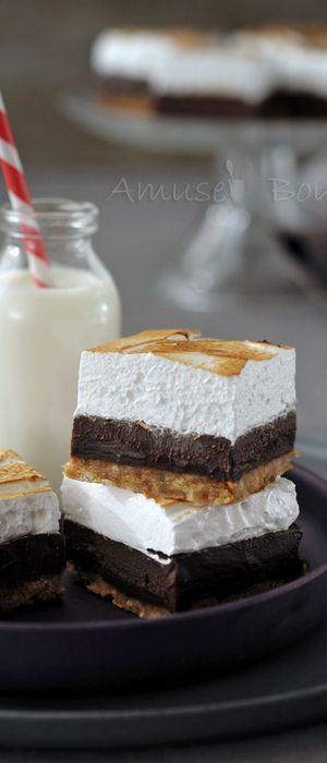 Carrés gourmands chocolat coco
