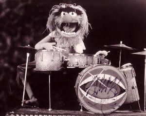 My Teeth Are A Drumset : ANIMAL