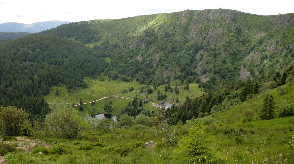 Col du Altenkraehkopf.  Nous entamons la descente vers le lac par le sentier Neunlist.