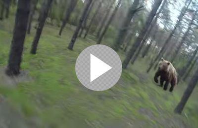 Vous n'allez pas croire ce qu'a vécu ce cycliste en pleine forêt