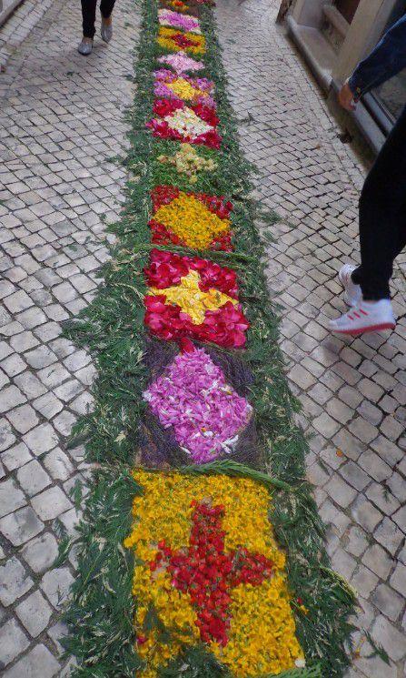 Le Portugal et ses Tapis de Fleurs ...