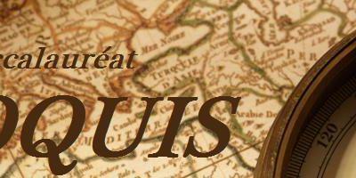 Croquis: l'inégale intégration des territoires à la mondialisation.