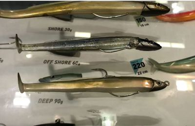 Pêche de loisir - vidéo des nouveautés Fiiish Black Eel et Crazy 2020
