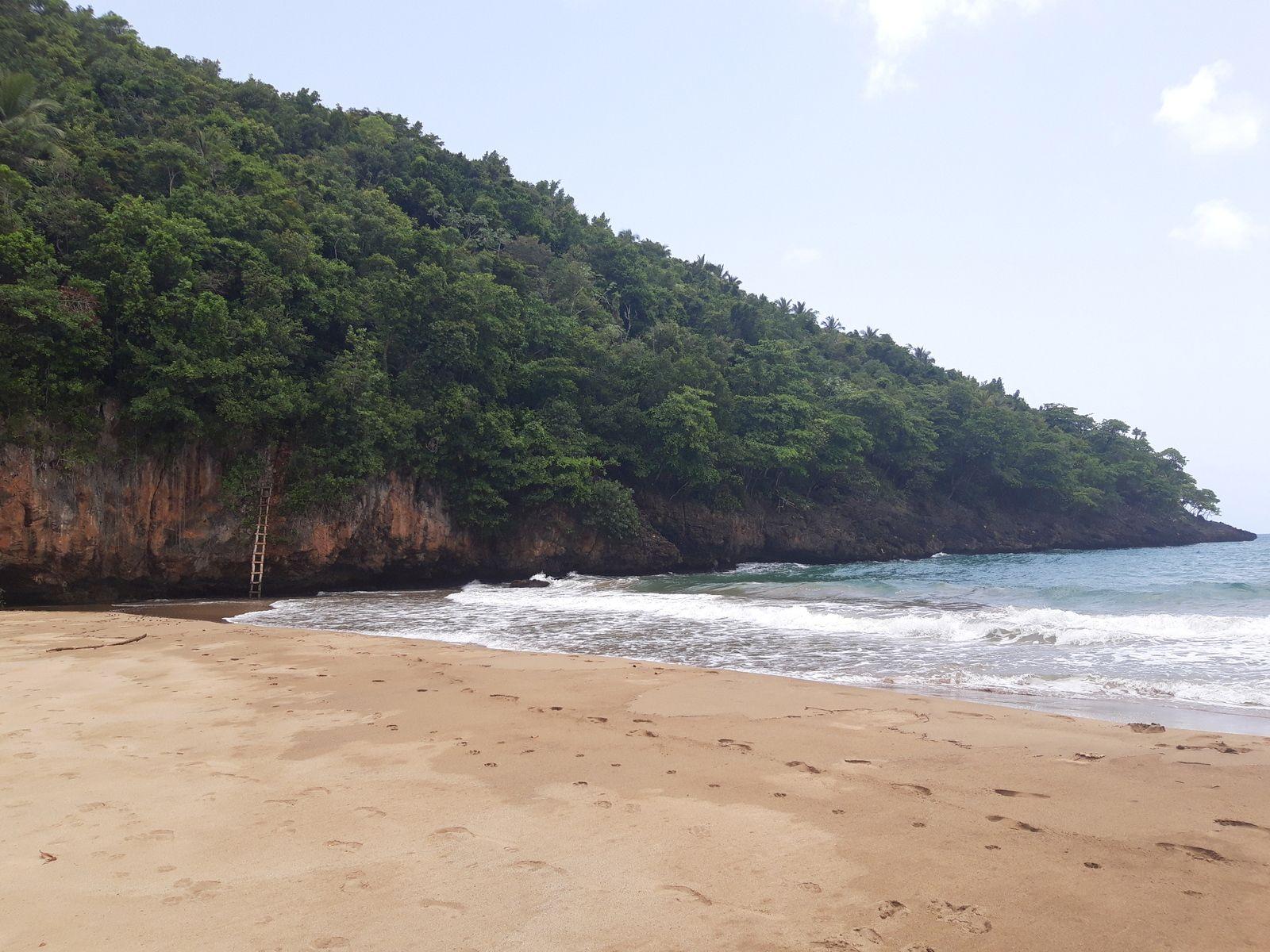 Album photo Playa El Valle - Samaná