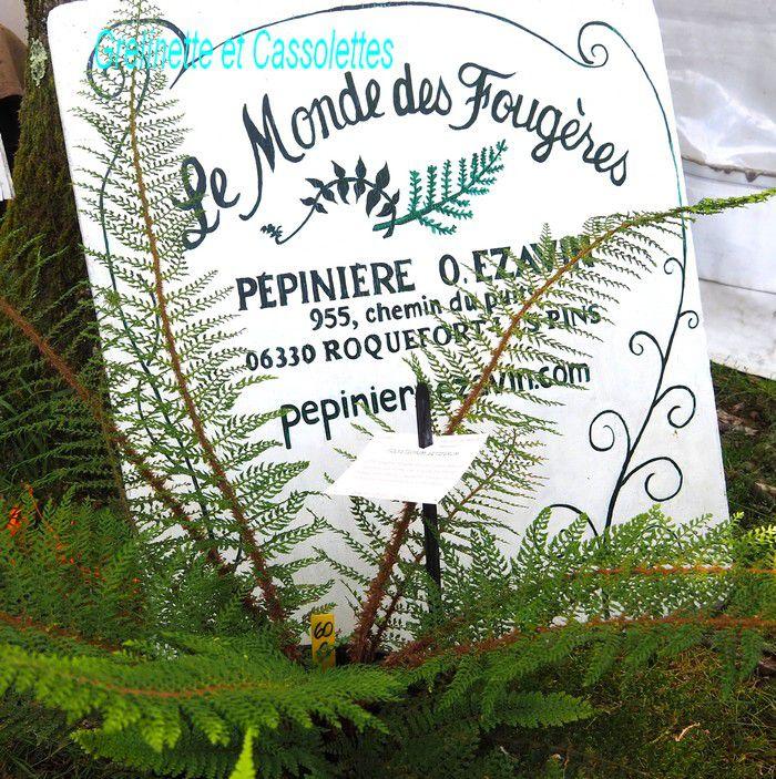 Fête des Plantes de Saint Jean de Beauregard Edition Printemps 2021, la Suite