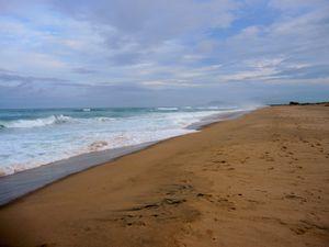 La beauté, la pureté, l'immensité... de l'océan