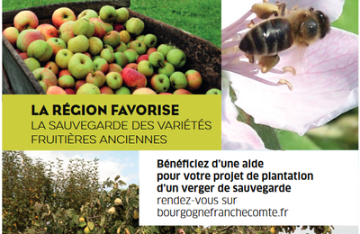 Plantation de haies et de vergers
