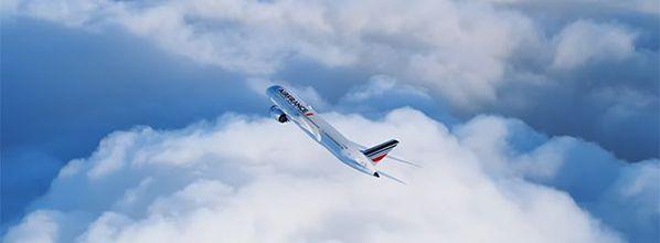 Le Boeing 787 d'Air France magnifié