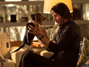 [And you will know my name is] John Wick