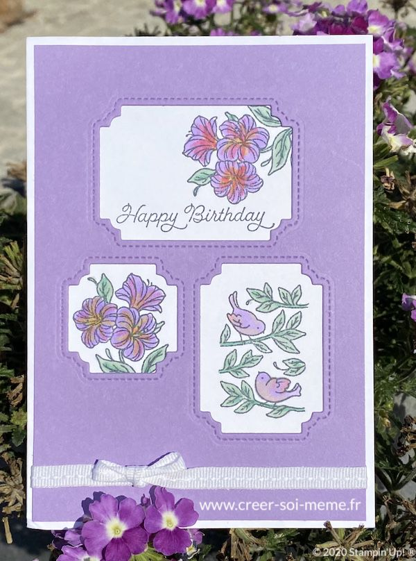 poinçons chouettes fenêtres et posted for you stampinup