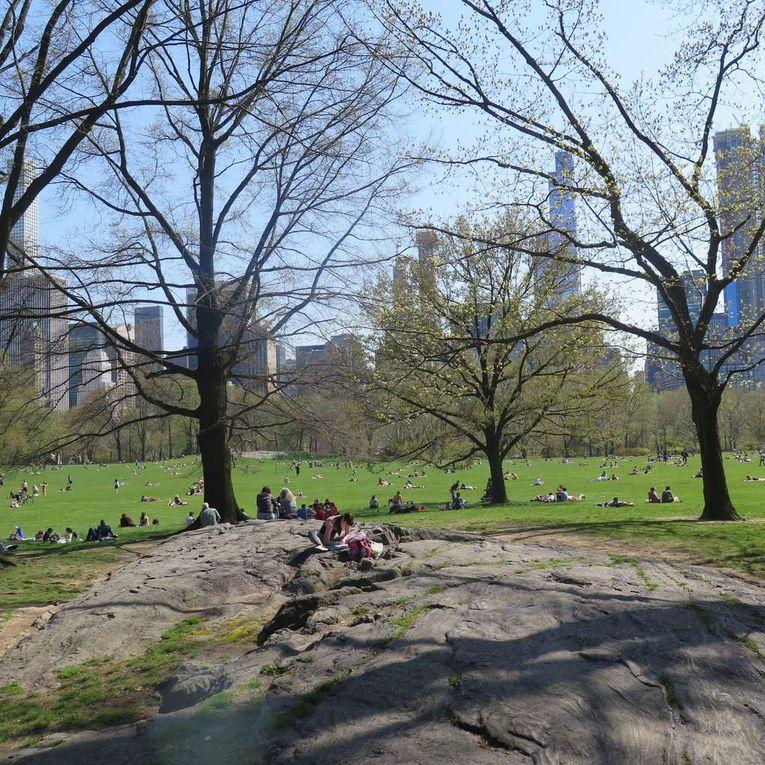 Whitney Museum, Liberty Island, A train (celui du Duke), Bluesau resto à Harlem, Lennon à Central Park, Empire State Building, etc...