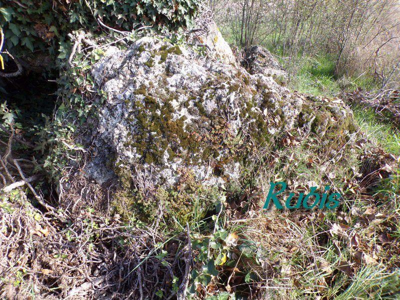 Dolmen du Breuil ou des Grosses Pierres, Brévainville (41)