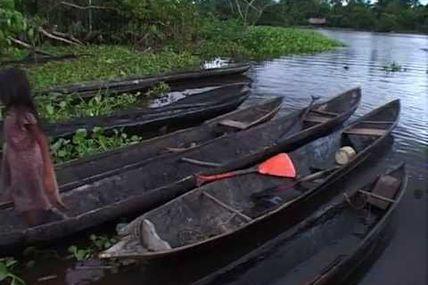 Vénézuela : Caracas, Lanos, Gran Savana, Delta de l Orenoque, Salto Angel, Tepuy...