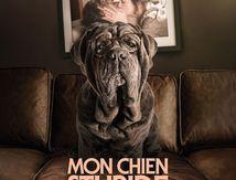 Mon Chien Stupide (2019) de Yvan Attal